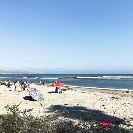 brine california surf trip doheny