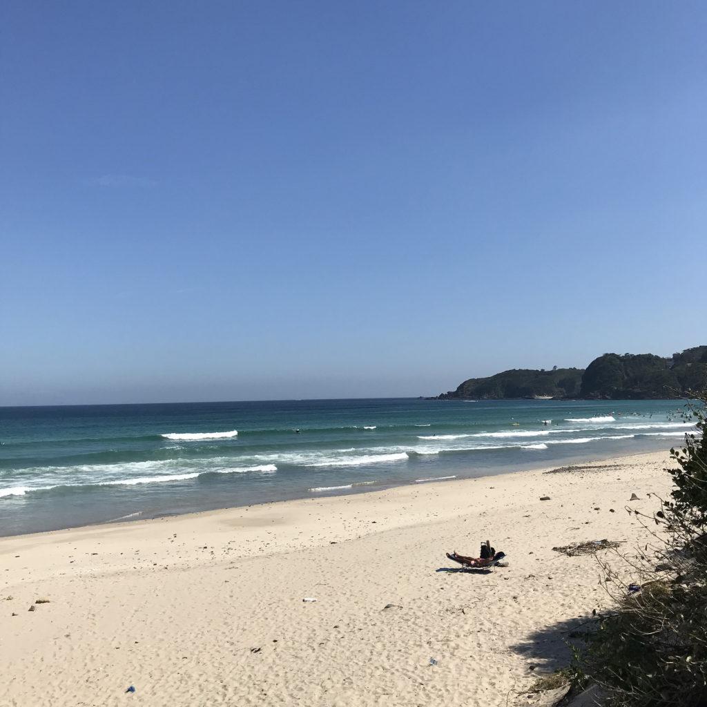 brine surf shop camp izu ブライン サーフショップ