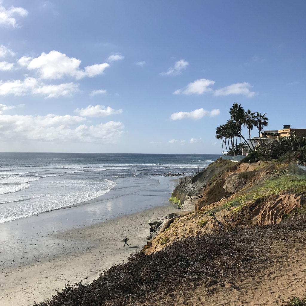 ブライン サーフショップ カリフォルニア テラマ― brine surf shop
