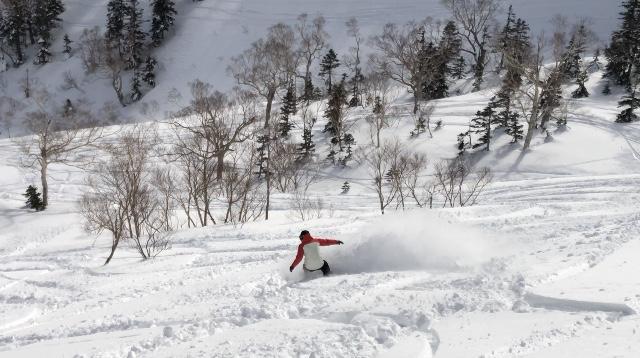 gentemstick micro mantaray brine snowsurf ブライン ゲンテンスティック
