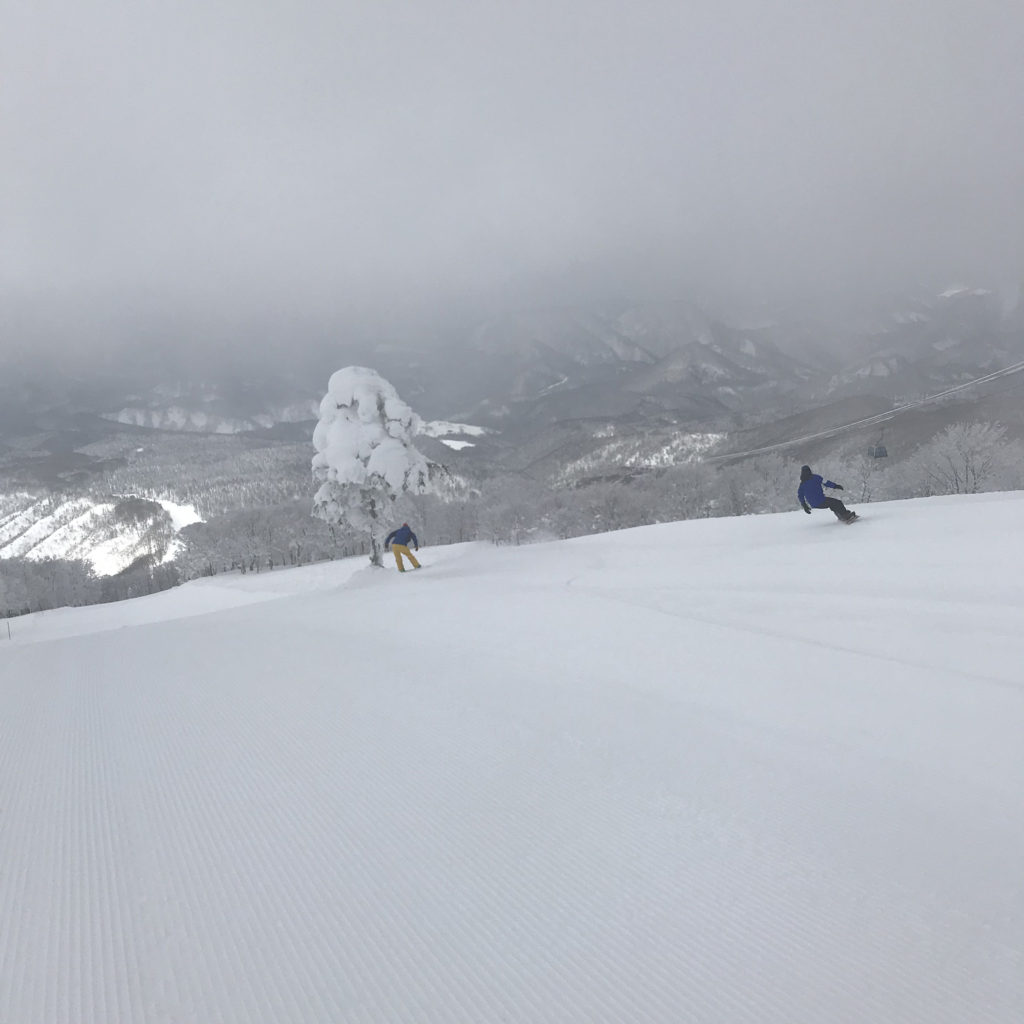 ゲンテンスティック ブライン gentemstick brine snow surf
