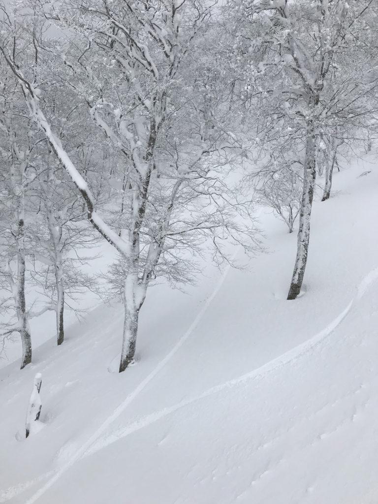 ブライン ゲンテンスティック brine gentemstick snow surf